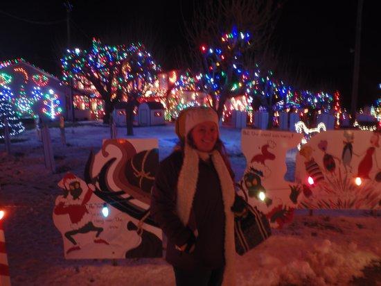 Koziar's Christmas Village: Christmas Village