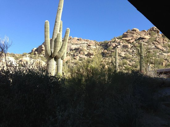 Four Seasons Resort Scottsdale at Troon North : View from our private patio