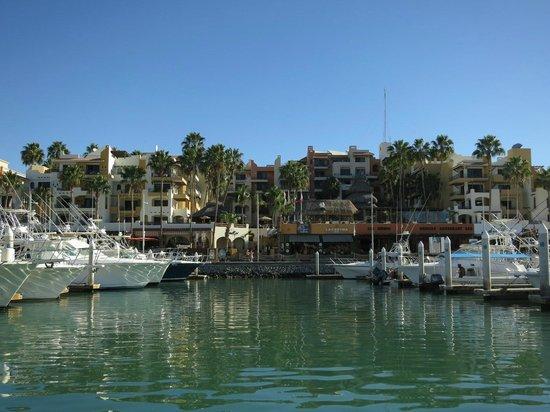 Barcelo Gran Faro Los Cabos : Marina de Cabo San Lucas