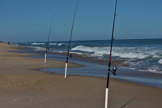 Fernandina Beach : great fishing on part of the beach