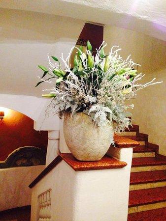 Hotel & Spa Rosa Alpina: buon giorno !