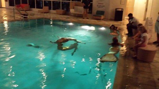 B Ocean Resort Fort Lauderdale : mermaid show