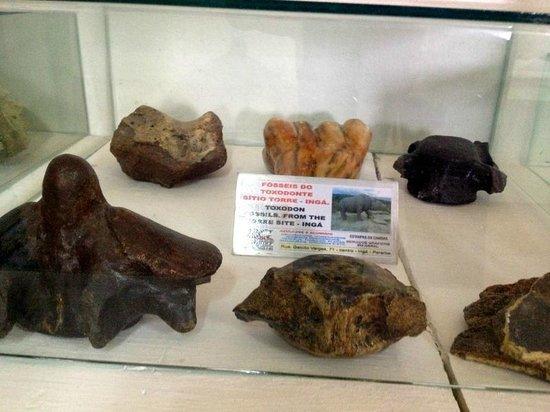 Pedra de Inga: Fossel