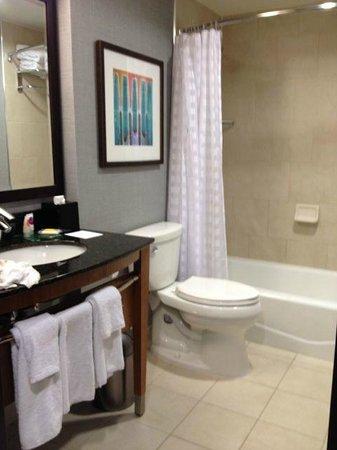 Hyatt Place New York Midtown South: Bathroom