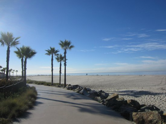 Another Side Of San Diego Tours : The Beach