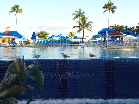 Breezes Resort & Spa Bahamas : view from dining room