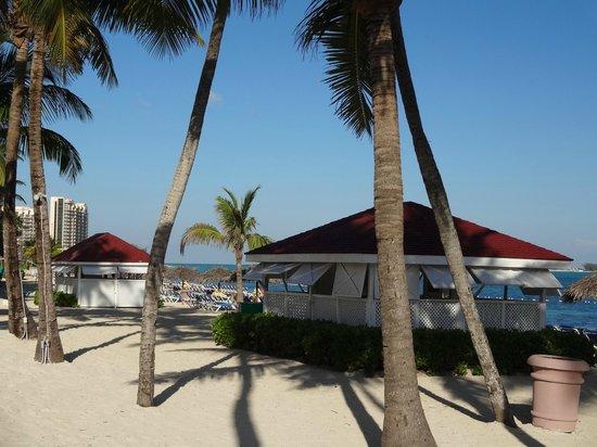 Breezes Resort & Spa Bahamas : beech