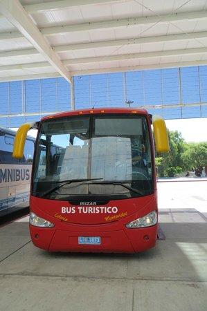 Bus Turistico Colonia