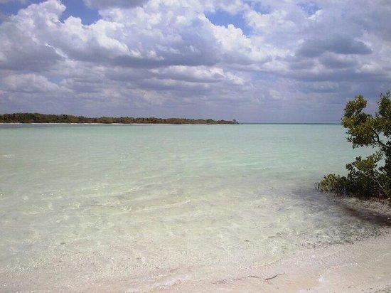 Golden Paradise Beach Hotel: Holbox