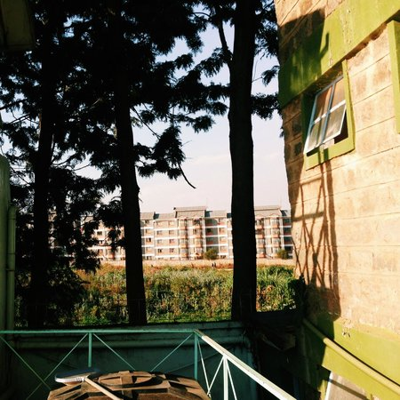 Sadili Oval B & B: A view near the pool-side, looking towards the direction of where the Kibera slums are located.