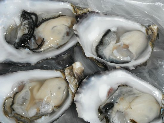 The Oyster Farm Shop: Delicious Pacific Oysters