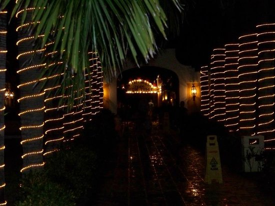 dreams tulum resort spa walkway with christmas lights on palm trees - Palm Tree With Christmas Lights