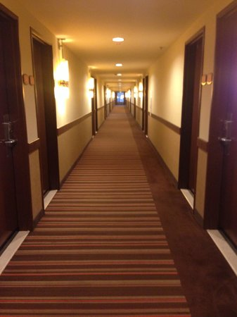 Red Lion Hotel Anaheim Resort : Hallway on the 3rd floor