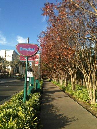 Red Lion Hotel Anaheim Resort: The neighbourhood