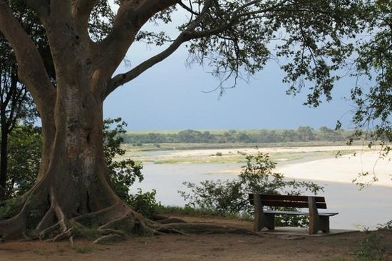 Letaba Rest Camp: View from Melville House