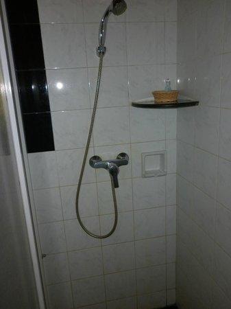 The Kandyan Villa: The bathroom