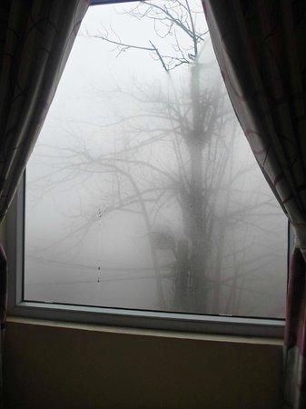 Sapa Backpacker Hostel: Foggy outside, beautiful scenery actually