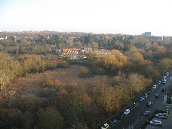NH Wiesbaden: the Aukamm valley (in December)