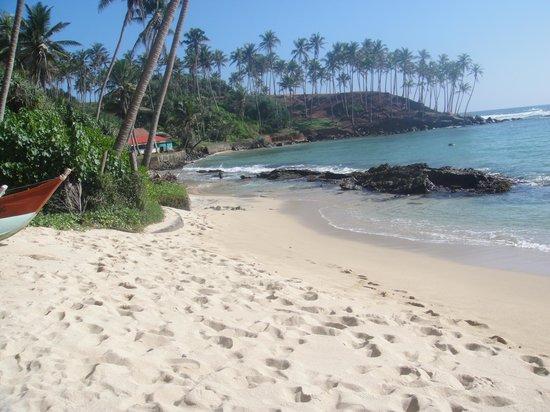 Sunray Resort Mirissa: Beach view 2