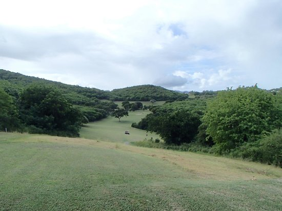 Cedar Valley Golf Club: course views