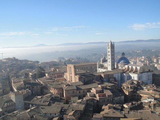Torre del Mangia: вид с башни