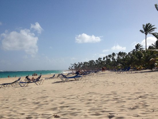 Occidental Caribe: Expansive, palm tree lined beach. Absolutely perfect.