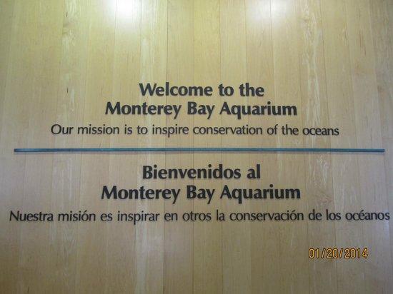 Monterey Bay Aquarium: welcome to MBA