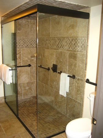 The Trinity Hotel: Walk-in shower with dual rain shower heads