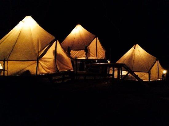 Dreamsea Surf Glamping Tents: Glamping Tents at Night