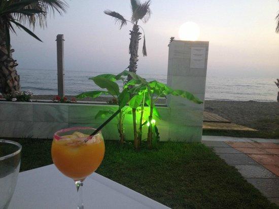 Santa Rosa Hotel: View from La Noche bar area