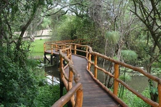 Camp Nkwazi: walk Way & Ponds