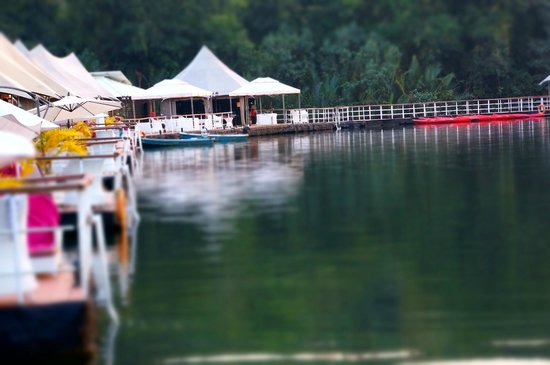 4 Rivers Floating Lodge: The Lodge