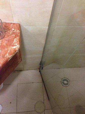 The Home Apartments: размер ванной комнаты 2х2