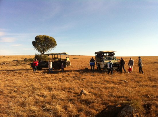 Samara Private Game Reserve : On top of the world