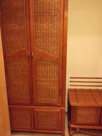 The Fern Gir Forest Resort : Storage cupboard