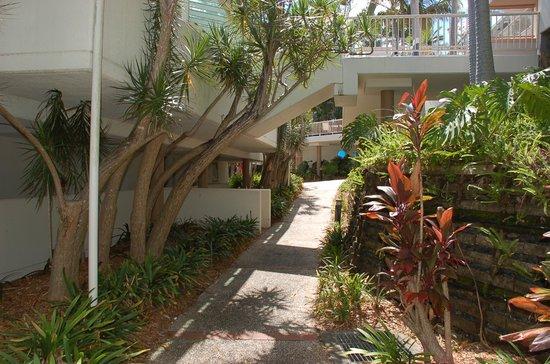 Ramada Resort Coffs Harbour: Walk from carpark to Terraces