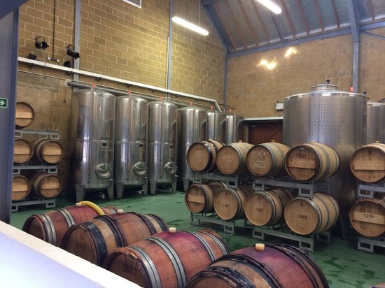 Denbies Wine Estate: Barrels and Vats