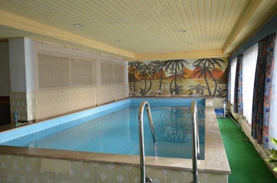 Tirolerhof Terenten: piscina