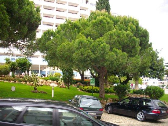 Algarve Gardens: Территория отеля