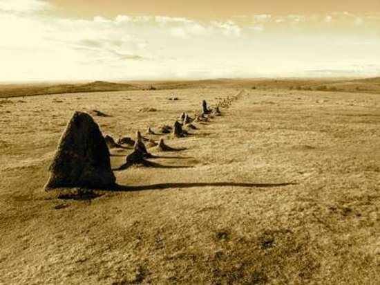 Tavistock, UK: Merrival stone row