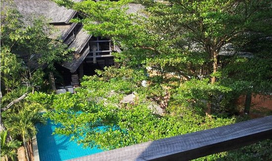 Rainforest Boutique: View from room