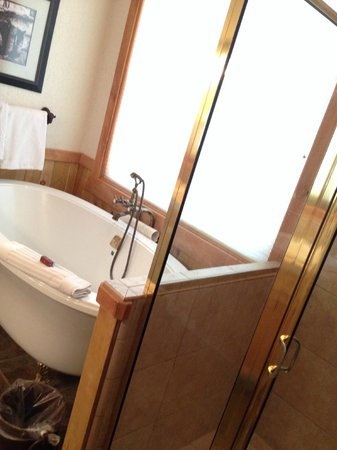 Sorrel River Ranch Resort and Spa: shower and tub