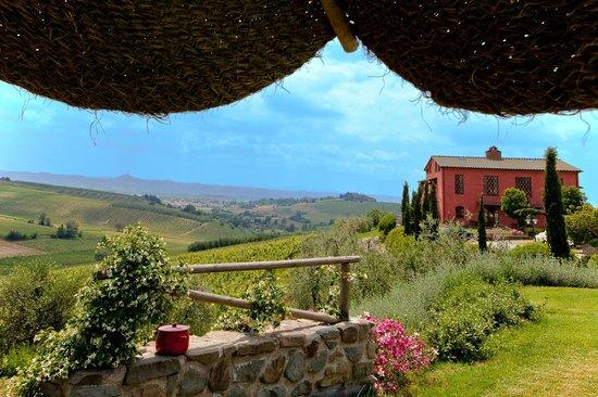 Agriturismo Borgo Vigna Vecchia: vista dalla piscina