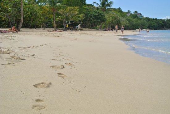 Pigeon Beach: soft sand