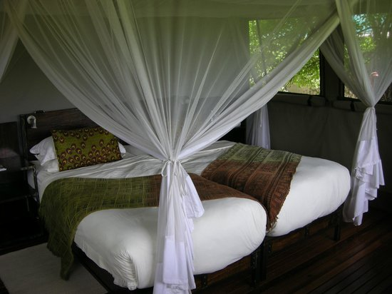 Accommodation at Sango Safari Camp