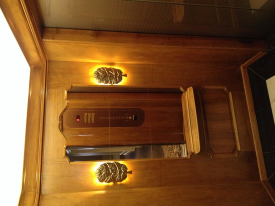 Hotel Schweizerhof: Beautiful lift