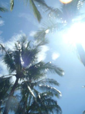 Centara Grand Beach Resort Samui: 強い日差し