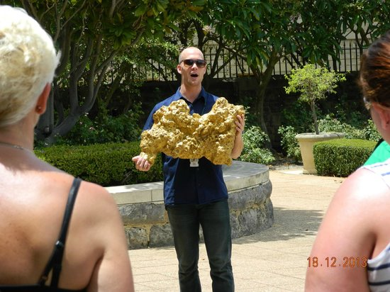 The Perth Mint: Gold nugget