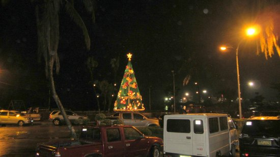 Don Felipe Hotel: nice christmas tree late january