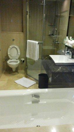 Royal Plaza on Scotts : Bathroom